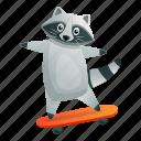 child, fitness, raccoon, ride, skateboard, sport