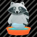 basin, face, nature, raccoon, wash, water
