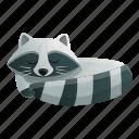 baby, eye, face, nature, raccoon, sleeping