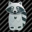 baby, child, cute, hand, nature, raccoon