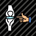 knee, joint, radiology, equipment, mri, ultrasound, human