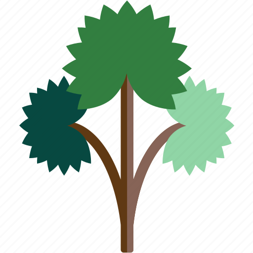 forest, rain, tree icon