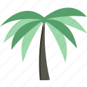 forest, palm, rain, tree icon