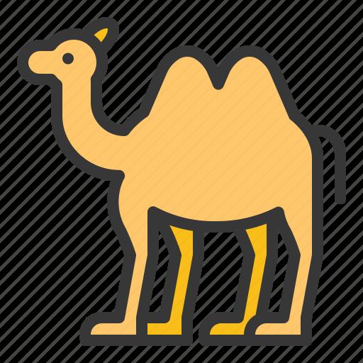abrahamic, animal, camel, islam, ramadan, religion icon