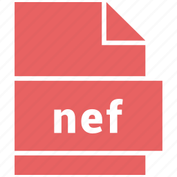 document, extension, file, nef, raster image file format, type icon