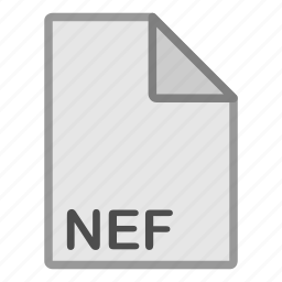 extension, file, format, hovytech, nef, raster, type icon