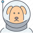 animal, astronaut, cosmonaut, dog, laika, mission, space icon