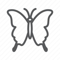 animal, butterfly, insect icon