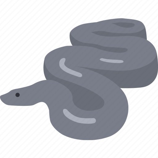 Anaconda, boa, constrictor, giant, python, serpent, snake icon - Download on Iconfinder