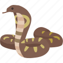 indian, king, king cobra, reptile, serpent, snake, venom icon