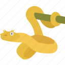 eyelash, golden, mangrove, snake, tree, venomous, viper icon