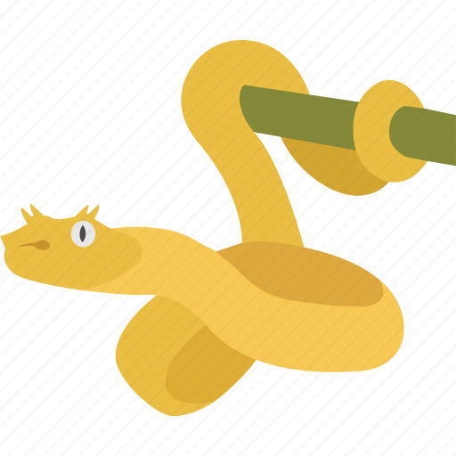 eyelash, golden, mangrove, snake, tree, venomous, viper icon