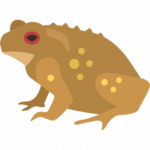 amphibian, cane, cane toad, common, frog, pest, toad icon