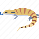 australian, blue, blue tongue lizard, lizard, reptile, skink, tongue icon