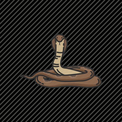 animal, cobra, king cobra, reptile, serpent, snake, vertebrates icon