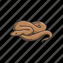 animal, carnivorous reptile, predator, reptile, serpent, snake icon