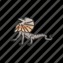 animal, dragon lizard, frill-neck lizard, frilled dragon, invertebrates, lizard, reptile icon