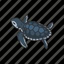 animal, baby sea turtle, hatchling, marine turtle, reptiles, vertebrates icon