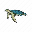 animal, reptiles, sea turtle, shell, turtle, vertebrates icon