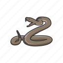 animal, rattle snake, reptile, serpent, snake, venomous snake icon