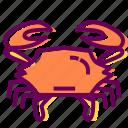crab, crustacean, sea, sea food icon