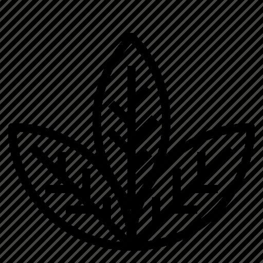Healthy, herb, leaf icon - Download on Iconfinder