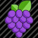 grape, grapes, fruit, food