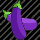 eggplant, vegetable, food