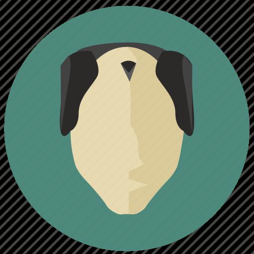 avatar, face, hair, old, samurai, style icon