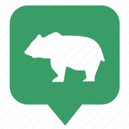 animal, bear, geo, map, pointer icon