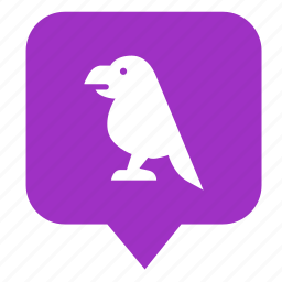 bird, fly, geo, location, place, pointer icon