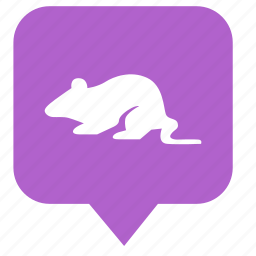 geo, location, map, mouse, pointer, rat icon