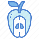 apple, diet, food, fruit icon