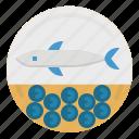 aquatic, caviar, eggs, food, sea