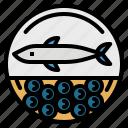 aquatic, caviar, eggs, food, sea icon