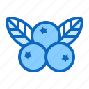 berry, blueberries, blueberry, cranberry icon