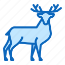 animal, deer, doe, forest icon
