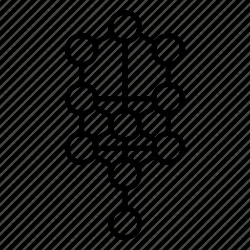 geometry, sacred, tree of life icon
