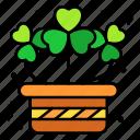clover, lucky, patrick, shamrock, basket