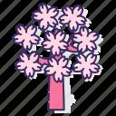 sakura, sakura tree, tree
