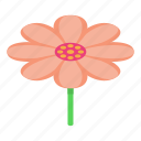 cartoon, flower, isometric, logo, samurai, tattoo, woman
