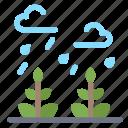environment, growth, leaf, life