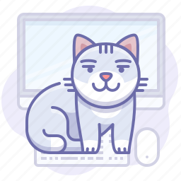 animal, cat, computer