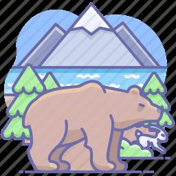 animal, bear, nature