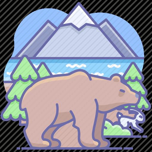 animal, bear, nature icon