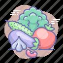 cabbage, garlic, tomato, vegetables icon