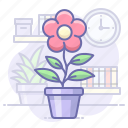 flower, home, pot, present icon