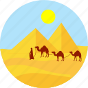 desert, sand, land, desert biome, desert animals, camel, animal