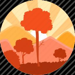eco, ecology, forest, sun, sunrise, tree, trees icon