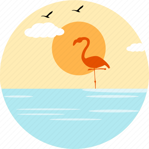 bird, birds, flamingo, flamingos, sea, sparrows, sunny icon